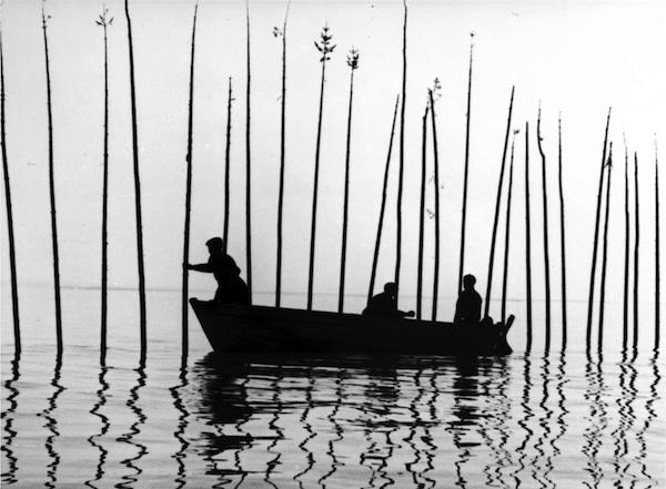 三個水域,三種漁夫